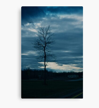Dark skies and lonely tree Canvas Print
