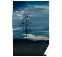 Dark skies and lonely tree Poster