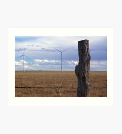 Texas Windmills Art Print