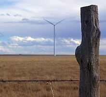 Texas Windmills by Pamela McAdams