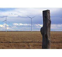 Texas Windmills Photographic Print