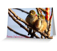 Happy Valentine's Day - Silvereye - NZ Greeting Card