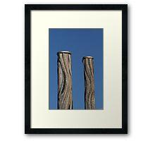 Newcastle Baths Poles Framed Print