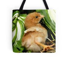 The Leaf Sun Lounger - Chick - NZ Tote Bag