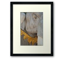 Strong and proud Framed Print