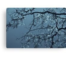 Spring Leaves Canvas Print