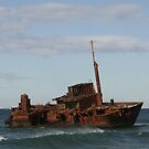 Signa Wreck by Peter Pevy