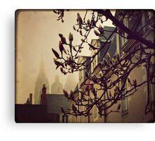 { morning fog } Canvas Print