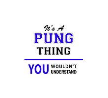 It's a PUNG thing, you wouldn't understand !! by thestarmaker