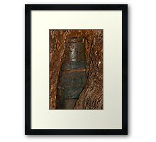 Ned Kelly Armour buried in old tree trunk Framed Print