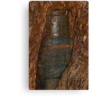 Ned Kelly Armour buried in old tree trunk Canvas Print