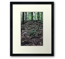 HDR Composite - Fallen Stone Wall Remains in Forest Framed Print