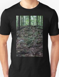 HDR Composite - Fallen Stone Wall Remains in Forest T-Shirt