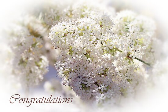 Wedding Blossom by Lesley Smitheringale