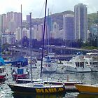 0218 Hong Kong Harbour by DavidsArt