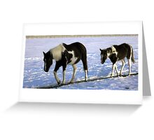 Mother & Foal - Winter Greeting Card