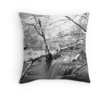 Duck River at Old Stone Fort Throw Pillow