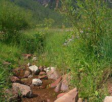 Rocks below Sievers Mountain by Paul Gana