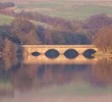 Bridge Reflections by spottydog06