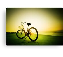 morning shine Canvas Print