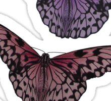 Timeless Beauty - Paper Kite Butterflies - NZ Sticker