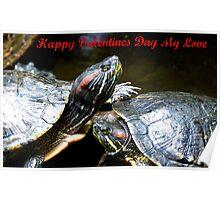 Happy Valentines Day My Love - Turtles NZ Poster