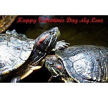 Happy Valentines Day My Love - Turtles NZ Photographic Print