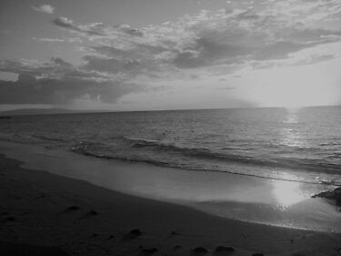 Sunset Series 05 BW by Jennifer  Tate