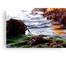 Waves on the Rocks Canvas Print