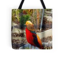 Touched By The Sun - Golden Pheasant - NZ Tote Bag