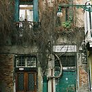 new and old door in Venice by julie08