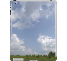 HDR Composite - Overgrowth in Nature Preserve iPad Case/Skin