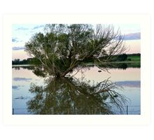From Paddock to Lake Overnight! - Gore Flooding - Southland Art Print