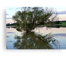 From Paddock to Lake Overnight! - Gore Flooding - Southland Canvas Print