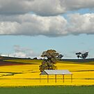 Spring Layers by GailD