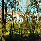 Avon Aqueduct II by Tom Gomez