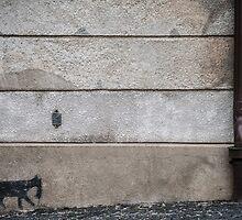 Alley Cat by Vladimir Gatara