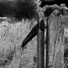 old worn gate ,  by rustycb