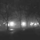 foggy night  by sarastu