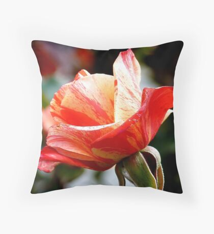 A Single Rose Can Be My Garden...  - Rose Bloom NZ Throw Pillow