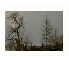 Grey Winter Afternoon Art Print
