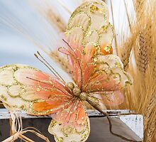 colored handmade butterfly by spetenfia