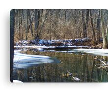 Golden Mirror Canvas Print