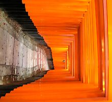 Kyoto's Inari Temple by Julien Bertrand
