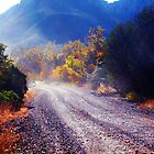 Autumn Road to Pinery Canyon by redhawk
