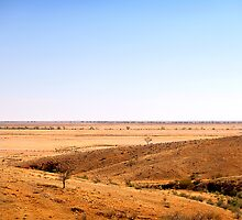 desert plain by dbax