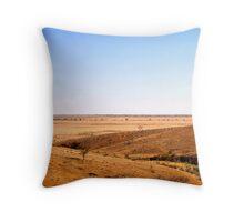 desert plain Throw Pillow