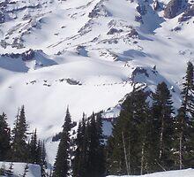 Mt. Rainier, Washington by christiecrew4