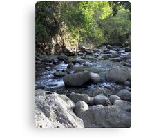 Beautiful valley Canvas Print