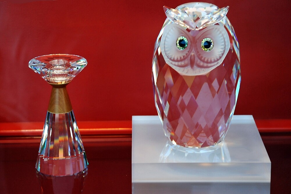 Owl with sparkling eyes by Arie Koene
